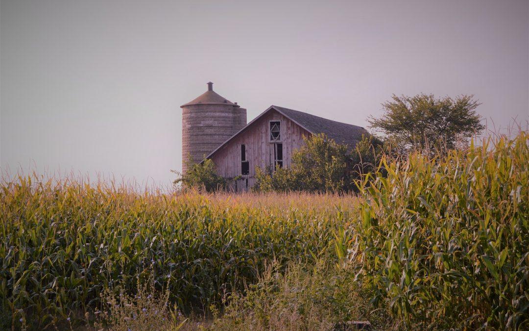 Three Classic American Barn Styles